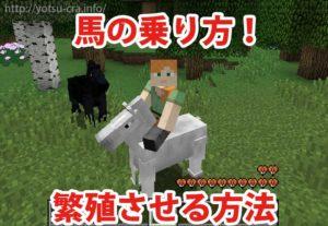 馬の乗り方