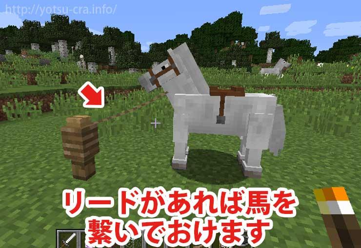 リードがあれば馬を繋いでおけます
