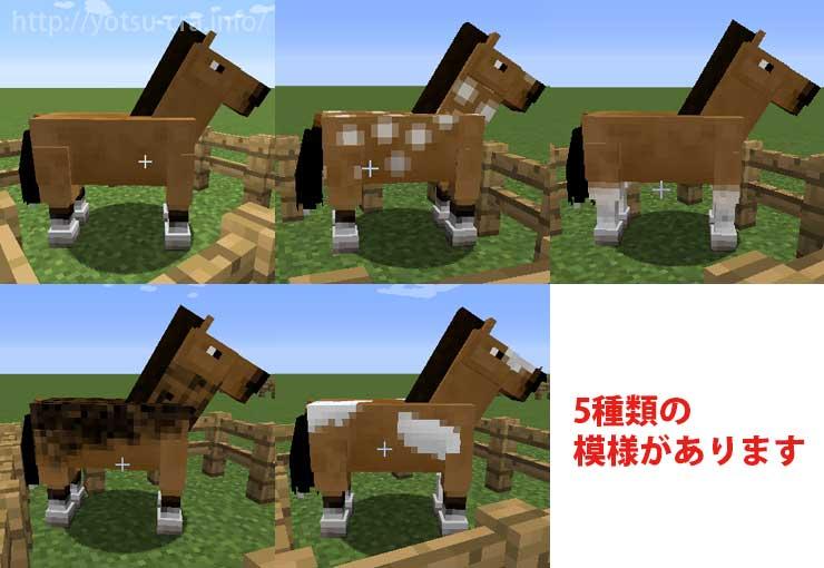 馬の模様パターン