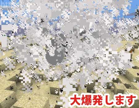 ウィザーの爆発
