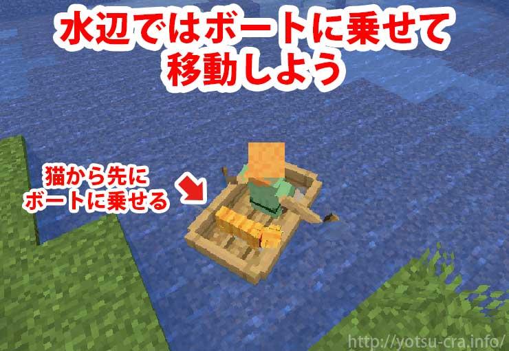 ボートを使って猫を運ぶ