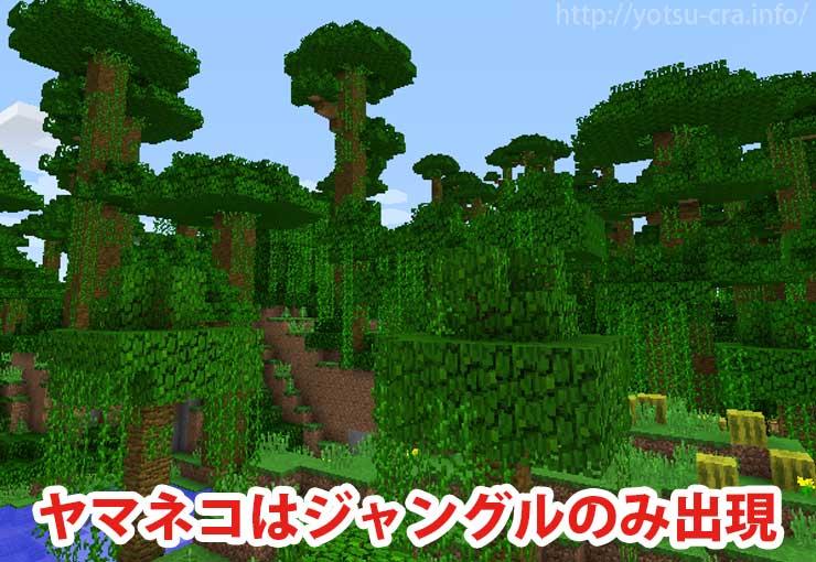 ヤマネコはジャングルのみ出現