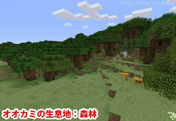 オオカミの生息地:森林